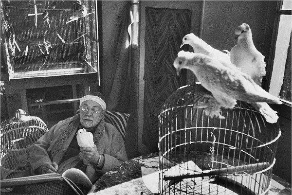 Matisse - H. Cartier-Bresson