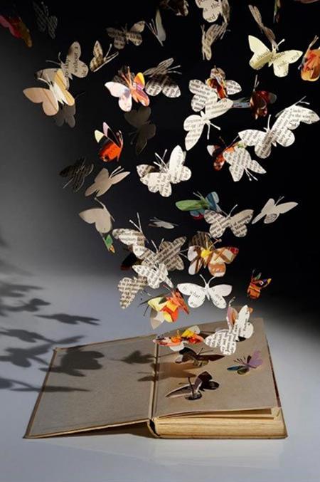 livre_papillons