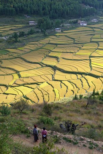 bhoutan_inde_9
